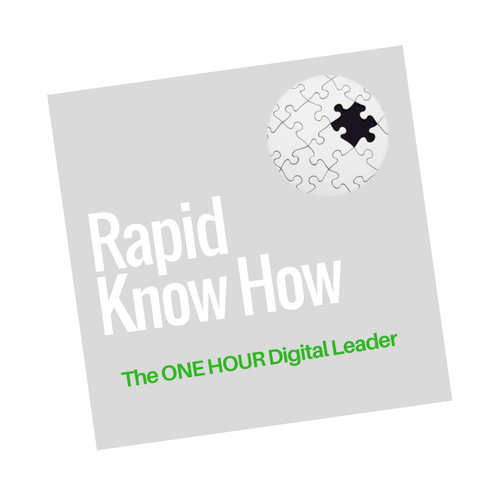 The 1-Hour Digital Leader  – Create Your Innovative Business Model in One Hour – Account Management Expert