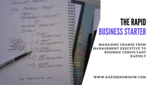 The Rapid Starter: 5 Steps to Change from a Management Executive to a Business Consultant Successfully